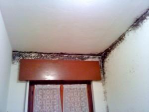 Ponte termico dovuto a cordolo in cemento armato e a una parete non isolata il tutto unito ad una scarsa areazione